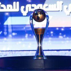 ختام النصف الأول من الدوري .. 120 مباراة .. 341 هدف ومليون مشجع