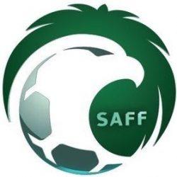 الاتحاد السعودي يحدد عدد المحترفين و المواليد