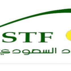 الاتحاد السعودي للتنس يفتتح موسمه الرياضي ببطولات الفردي للدرجات الثلاث في ثلاث مدن
