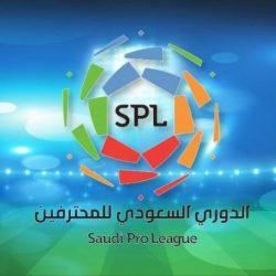 بطولة العرب توقف دوري المحترفين 19 يوماً